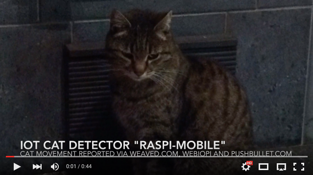 raspi-mobile as cat-sitter
